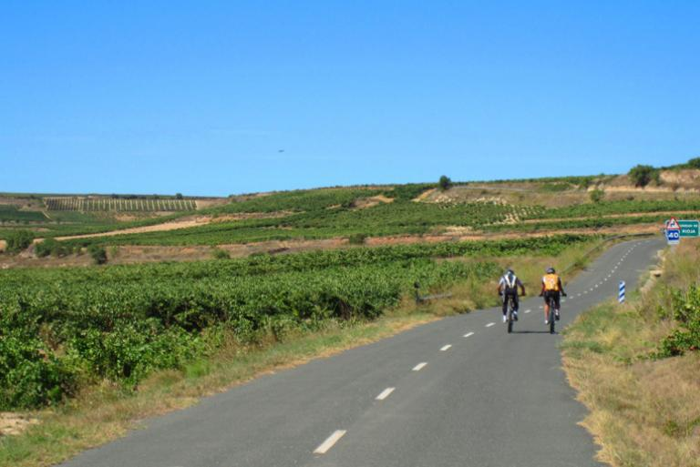 Cyclists in La Rioja road